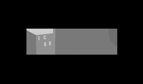 icss packaging cliente pyg realizzazione sito web