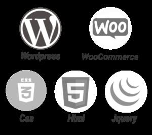 realizzazione siti web wordpress woocommerce web agency pavia